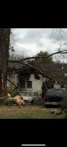 grays storm damage roof repair