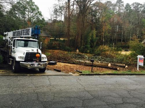 grays roofing tree crane service